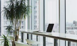Geld und Ressourcen sparen: Mit diesen 7 Tipps schonst du im Büroalltag Kapital und Umwelt