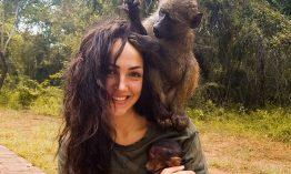 Diese junge Frau setzt sich für den Schutz von Affen ein und gründete eine Tierschutzorganisation in Afrika – Was es bedeutet dem Herzen zu folgen